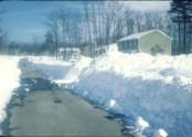 Blizzard '78 Karen Lane